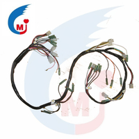 Motorcycle Parts Wire Harness Of BAJAJ BOXER CT100